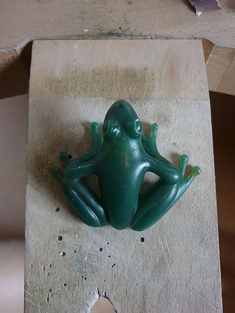 Maquette en cire à sculpter d'une grenouille vue de dessus - Atelier Constance du Bellay